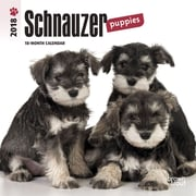 Schnauzer Puppies 2018 Mini 7 x 7 Inch Wall Calendar