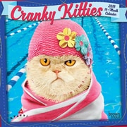 Avanti Cranky Kitties 2018 7 x 7 Inch Monthly Mini Wall Calendar