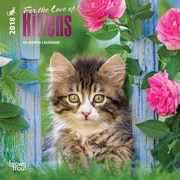 For the Love of Kittens 2018 Mini 7 x 7 Inch Wall Calendar with Foil Stamped Cover