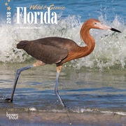 Florida, Wild & Scenic 2018 7 x 7 Inch Monthly Mini Wall Calendar