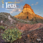 Texas, Wild & Scenic 2018 7 x 7 Inch Monthly Mini Wall Calendar