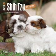 Shih Tzu Puppies 2018 Mini 7 x 7 Inch Wall Calendar