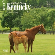 Kentucky, Wild & Scenic 2018 7 x 7 Inch Monthly Mini Wall Calendar