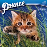 Pounce 2018 7 x 7 Inch Monthly Mini Wall Calendar
