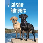 Labrador Retrievers 2018 Engagement Calendar