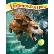 Underwater Dogs 2018 6 x 7.75 Inch Engagement