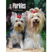 Yorkshire Terriers 2018 Engagement Calendar