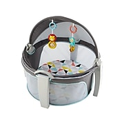 Fisher-Price On-the-Go Baby Dome, Windmill (DRF13)