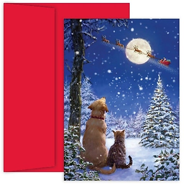 JAM Paper® Christmas Card Set, And To All A Goodnight Holiday Cards, 18/pack (526897500)