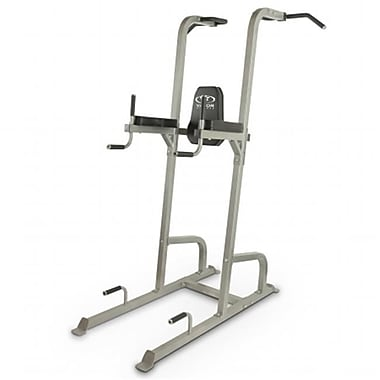 Valor Fitness Vertical Knee Raise Tower, Silver (VLA397)