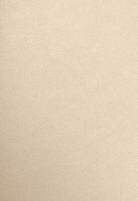 LUX 13 x 19 Cardstock 500/Pack, Taupe Metallic (1319-C-M09-500)