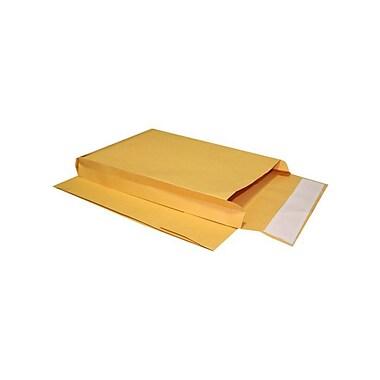 LUX Expansion Envelopes, 40 lb., 8