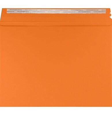 LUX Mailers (9 1/2 x 12 1/2) 50/Pack, Mandarin (LUXMLR-11-50)