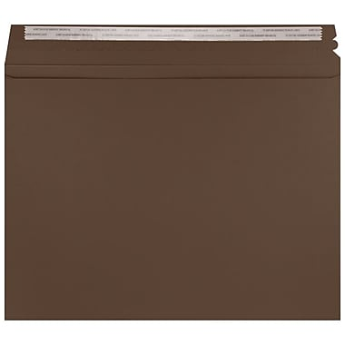 LUX Mailers (9 1/2 x 12 1/2) 50/Pack, Chocolate (LUXMLR-17-50)