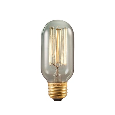 Bulbrite Incandescent (INC) T14 40W Dimmable Nostalgic 1800K Smoke Amber Light Bulb, 4 Pack (154015)