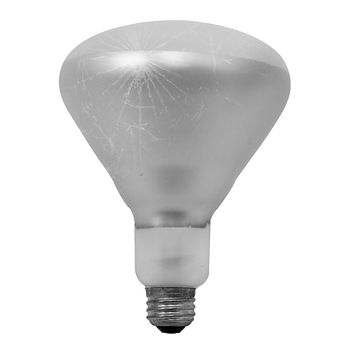 Bulbrite 860894 250 W Dimmable BR40 Shape Incandescent Bulb E26 Base with Medium Screw 6 Pack Clear Tough Coat