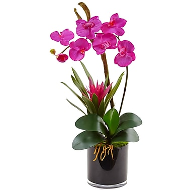 Nearly Natural Orchid and Bromeliad in Glossy Black Cylinder (1437-DP)