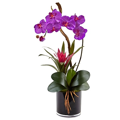 Nearly Natural Orchid and Bromeliad in Glossy Black Cylinder (1437-OR)