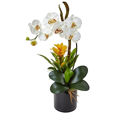 Nearly Natural Orchid and Bromeliad in Glossy Black Cylinder Planter (1478-CR)