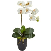 Nearly Natural Phalaenopsis Orchid in Black Vase (1479-CR)