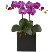 Nearly Natural Double Mini Phalaenopsis in Black Vase (1483-OR)