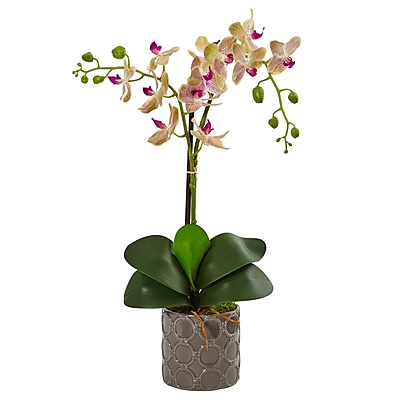 Nearly Natural Double Phalaenopsis Orchid in Gray Ceramic Pot (1488)