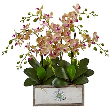 Nearly Natural Phalaenopsis Orchid Arrangement in Decorative Wood Vase (1491)