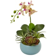 Nearly Natural Phalaenopsis Orchid and Succulents in Decorative Vase (1496)