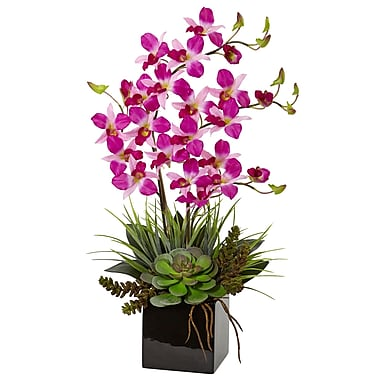 Nearly Natural Orchid and Succulent Arrangement in Black Vase (1511-PP)