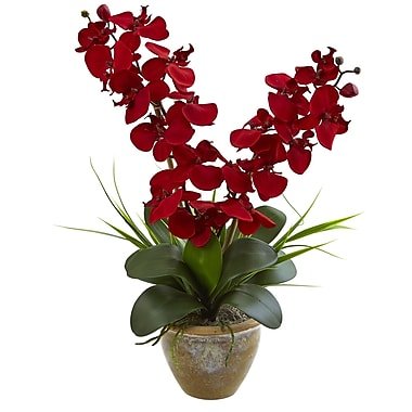 Nearly Natural Seasonal Double Phalaenopsis Orchid Arrangement (1514-RD)
