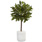 Nearly Natural 2'H Sweet Bay Tree in White Glossy Cylinder (5980)