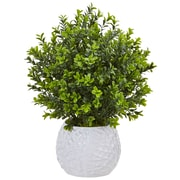 Nearly Natural Boxwood in White Vase (Indoor/Outdoor) (6310)