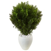Nearly Natural 3' Cedar in Oval Textured Planter (6992)