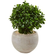 Nearly Natural 2' Eucalyptus in Sand Colored Bowl UV Resistant (6993)