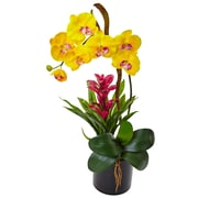 Nearly Natural Orchid and Bromeliad in Glossy Black Cylinder (1478-YL)