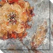 "Amanti Art Canvas Art Gallery Wrap Ashanti I (Floral) by Adam Rogers 20""W x 20""H, Frame None (DSW3637222)"