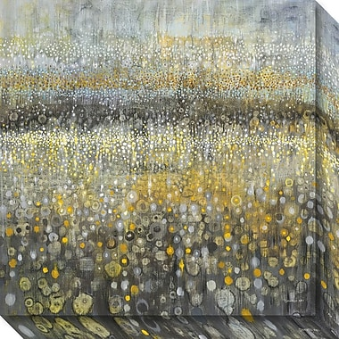 Amanti Art Canvas Art Gallery Wrap Rain Abstract II by Danhui Nai 20