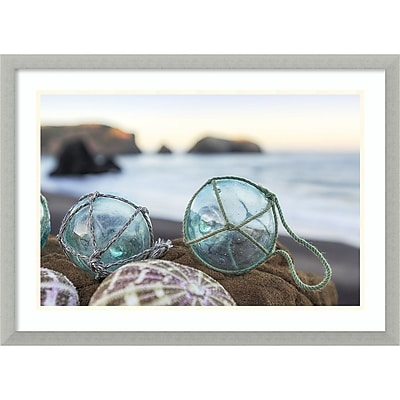 Amanti Art Framed Art Print Rodeo Beach Shells 16 by Alan Blaustein 29