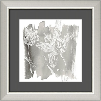 Amanti Art Framed Art Print Water Wash I Neutral (Floral) by Sue Schlabach 24