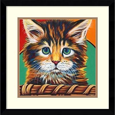 Amanti Art Framed Art Print Kitten in Basket I by Carolee Vitaletti 17