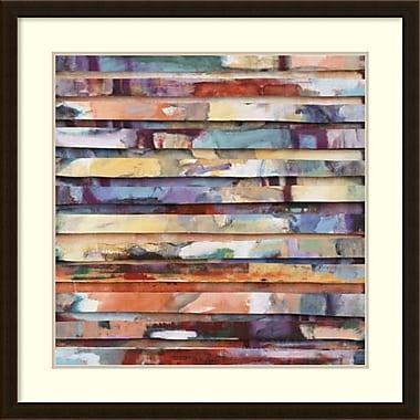 Amanti Art Framed Art Print Bound IV by Don Wunderlee 32
