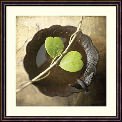 Amanti Art Framed Art Print Entwined by Glen & Gayle Wans, 24