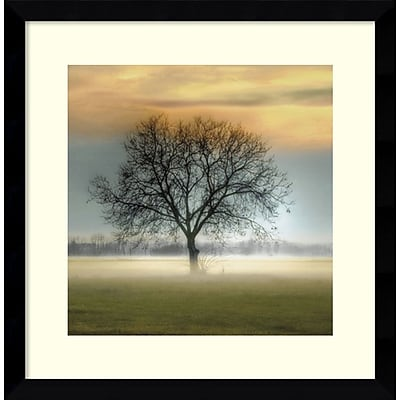"""""Amanti Art Framed Art Print Misty Silhouette by Steven Mitchell 17"""""""" x 17""""""""H, Frame Satin Black (DSW3908993)"""""" 24010741"