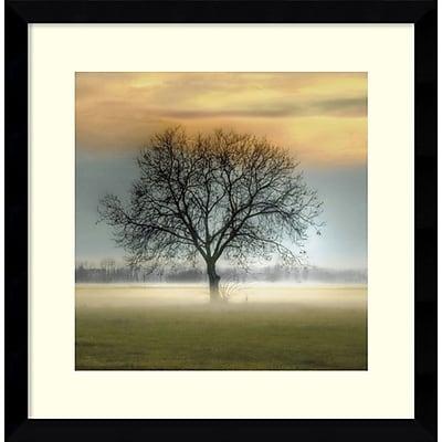 Amanti Art Framed Art Print Misty Silhouette by Steven Mitchell 17