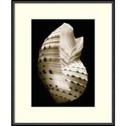 Amanti Art Framed Art Print Tonna by Sondra Wampler 11 x 14 Frame Black (DSW3909026)