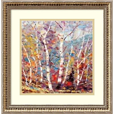 Amanti Art Framed Art Print Birch Colors 2 by Dean Bradshaw 18
