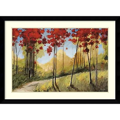 Amanti Art Framed Art Print Forest Trail by Thomas Andrew 45