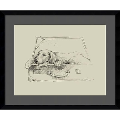 """""Amanti Art Framed Art Print Stowaway III by Ethan Harper 23""""""""W x 19""""""""H, Satin Black (DSW3909197)"""""" 24011079"