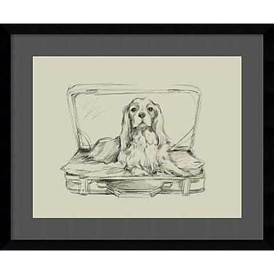 """""Amanti Art Framed Art Print Stowaway IV (Dog) by Ethan Harper 23""""""""W x 19""""""""H, Satin Black (DSW3909198)"""""" 24011116"