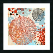 "Amanti Art Framed Art Print Exotic Sea Life VI by Irena Orlov 22""W x 22""H, Frame Black (DSW3909204)"